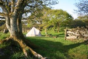 Glamping in Dinas