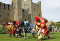 Show more details of Magna Carta: Celebrating 800 Years of History