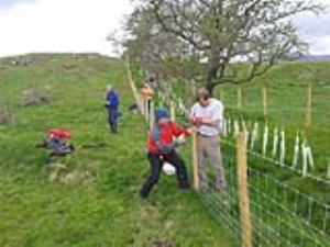 Volunteers at Eycott Hill Nature Reserve