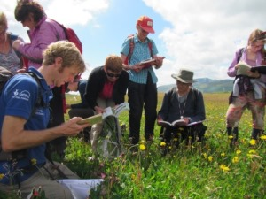 Wildflower survey at Eycott Hill
