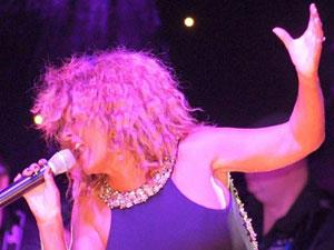 Simply The Best - The Tina Turner Experience