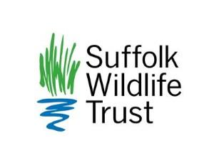 Children's activity: Wildlife Detectives