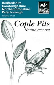 Cople Pits Nature Reserve