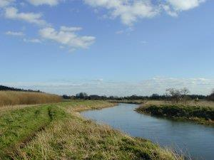 Kingfisher Way - Biggleswade - Tempsford