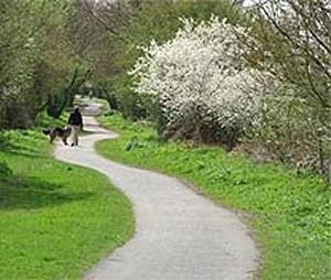 The Cuckoo Trail,walking,cycling,Sussex
