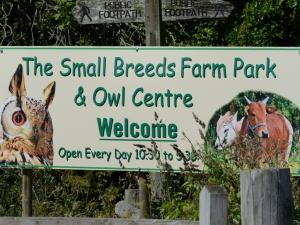 Small Breeds Farm and Owl Centre