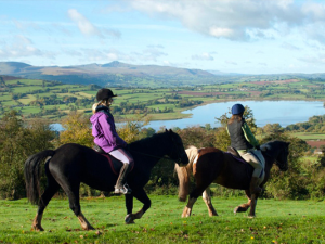 Horse Riding at Llangorse