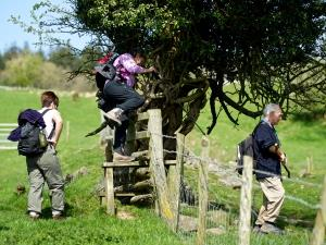 Chepstow Walkers are Welcome