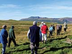Guided walk at Eycott Hill Nature Reserve