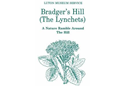 Bradger's Hill (The Lynchets)
