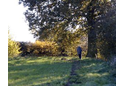 Colmworth Parish Paths