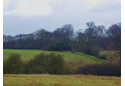 Colworth Estate Circular Walk