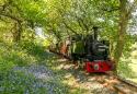Show more details of Rheilffordd Talyllyn Railway