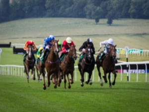Flat racing at Chepstow Racecourse