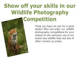 Wildlife Photography Competition!