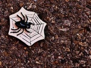 Spooky Spider Crafts