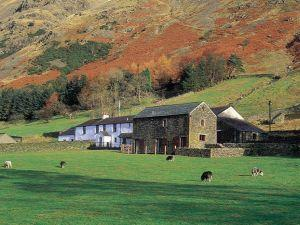 Fornside Farm Cottages