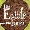 Edible Forest Festival