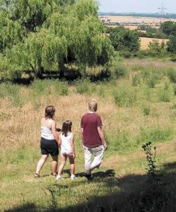 Potton-Sutton Circular Walk