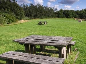 Oakthorpe Colliery Picnic Site