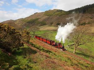 The Victorian Train
