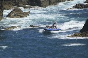 Experience the fast currents around Ramsey Island