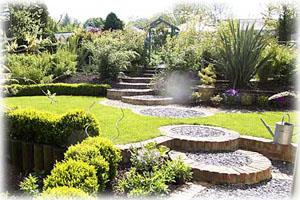 Summers Garden