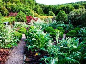 Veddw Garden