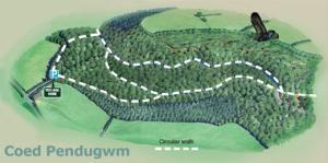 Coed Pendugwm