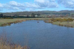 Dolydd Hafren View