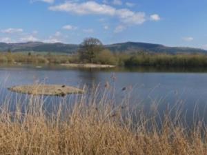 Llyn Mawr Nature Reserve
