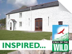 Maes Y fron farmhouse