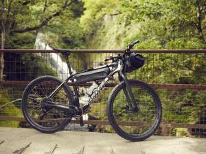 Coed y Brenin Mountain Biking