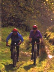 Mynydd Trawsnant - Off-Road Loop