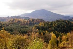 Gwydr Forest Park
