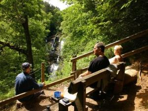 Above Swallow Falls Gwydir Forest
