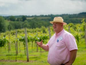 Vineyard Tour with Robb Merchant