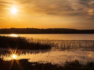 Llangorse Lake at Sunset