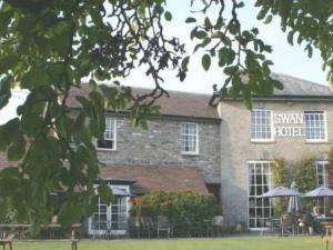 Swan at Hay