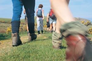 Plas Glyn Y Weddw Headland Walk