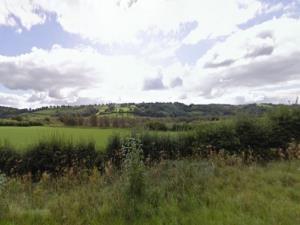 Cors Goch Llanllwch Nature Reserve