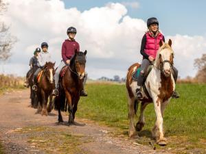 Llangorse Riding Centre