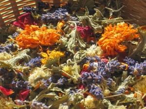 Petals of the Valley Ltd