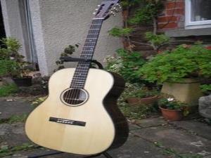 Richard Meyrick Guitars