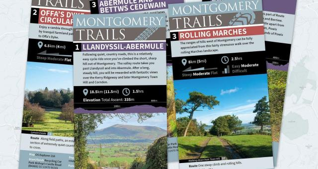Abermule and Bettws Cedewain (Cycle Route)