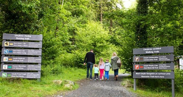Walking Trails at Coed Y Brenin