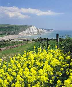 Seven Sisters Country Park Nature Reserve