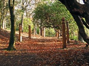 Parc Glynllifon