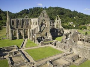 Dog Friendly Tintern
