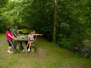 Family picnicing at Pont Llogel Dyfnant Forest.